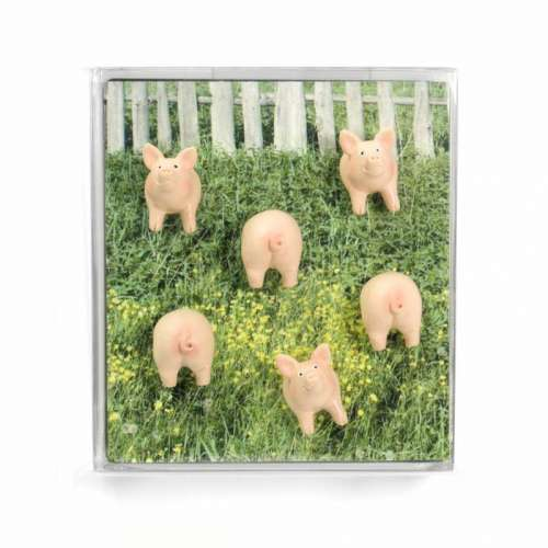 Aimants magnets 6 cochons pour le frigo