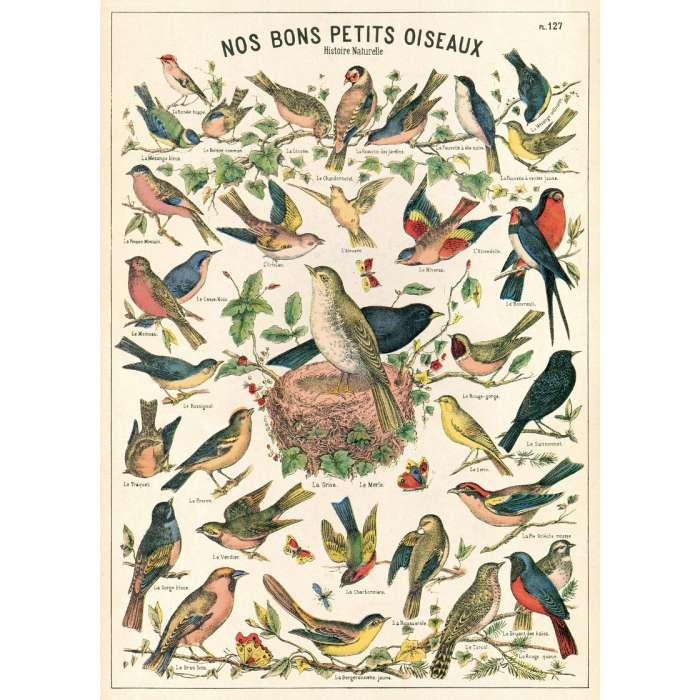 POSTER AFFICHE VINTAGE, Les oiseaux