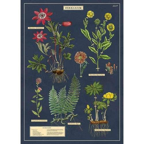 Affiche, Poster, l'Herbier Ancien