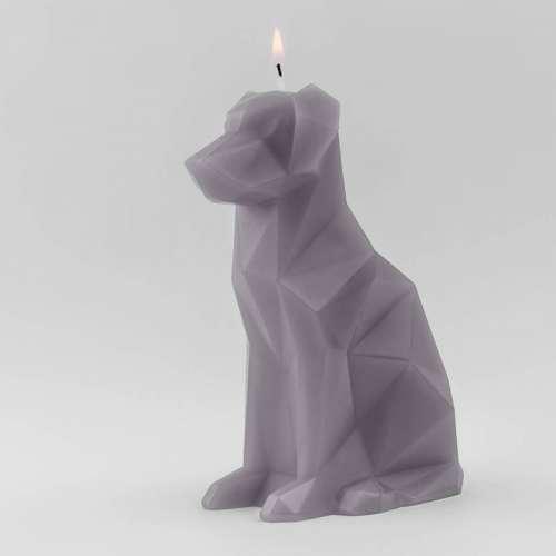 Bougie Déco chien avec Squelette - Pyropet