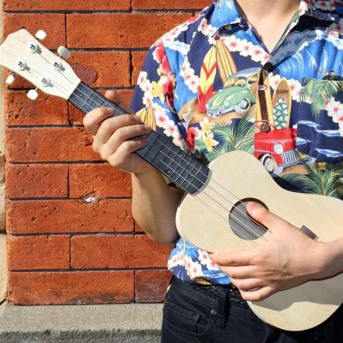 Ukulele à Monter soi même, Diy, Guitare bois